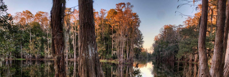 Kissimmee, Florida, United States of America