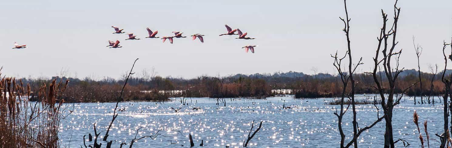 Lake Charles, Louisiana, Verenigde Staten