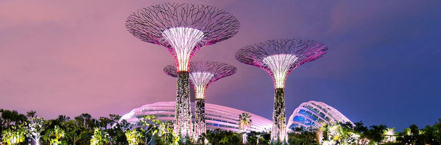 新加坡, 新加坡