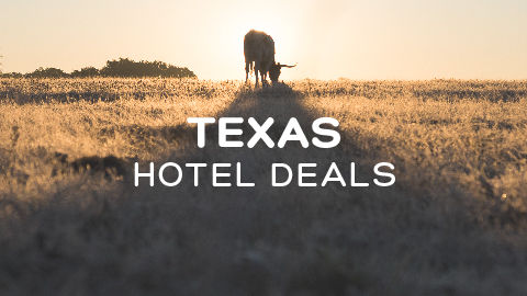 Hotels cheap hotels discount rates hotel deals lone star savingsdeals as big as the state itselfview deals fandeluxe Choice Image
