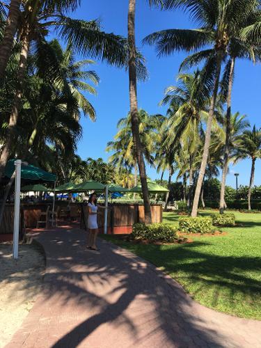 holiday inn miami beach oceanfront miami beach florida. Black Bedroom Furniture Sets. Home Design Ideas
