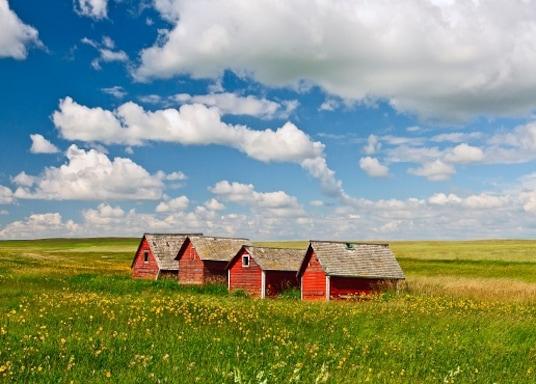Stettler, Alberta, Canadá