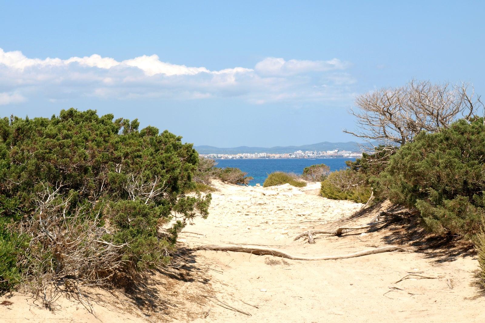 korean nude beach