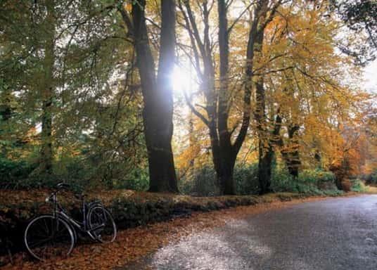 Portumna, Ireland