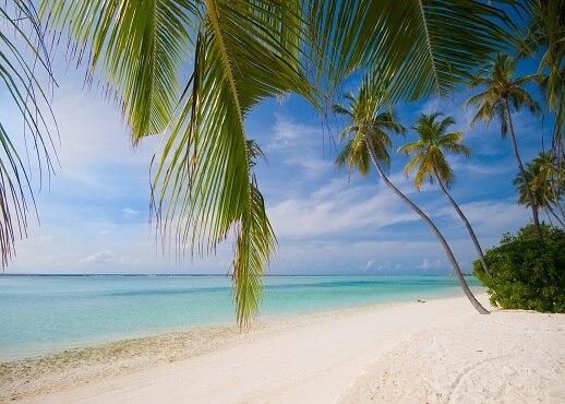 Clifton Beach, Queensland, Australia