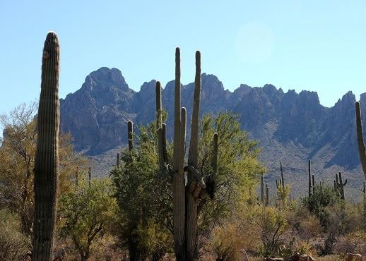Marana, Arizona, United States of America