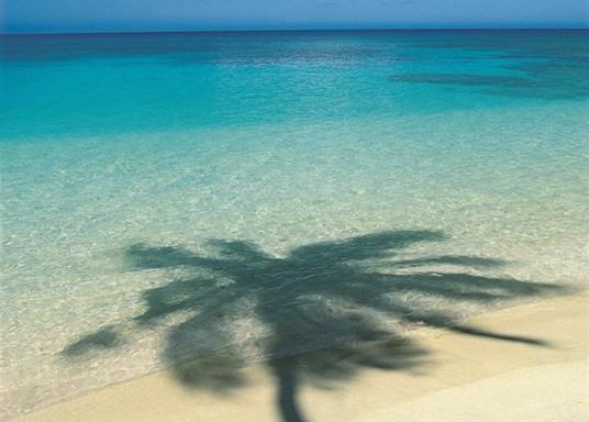 เกาะ Laucala, ฟิจิ