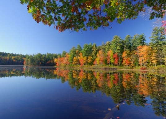 West Ossipee, New Hampshire, USA