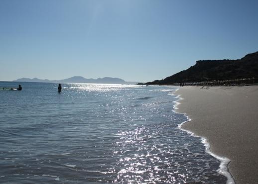มัสติชารี, กรีซ