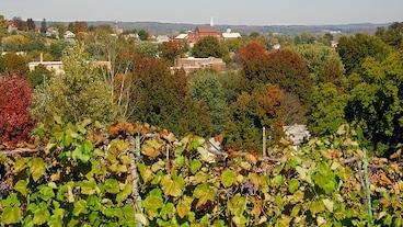 Rhineland/