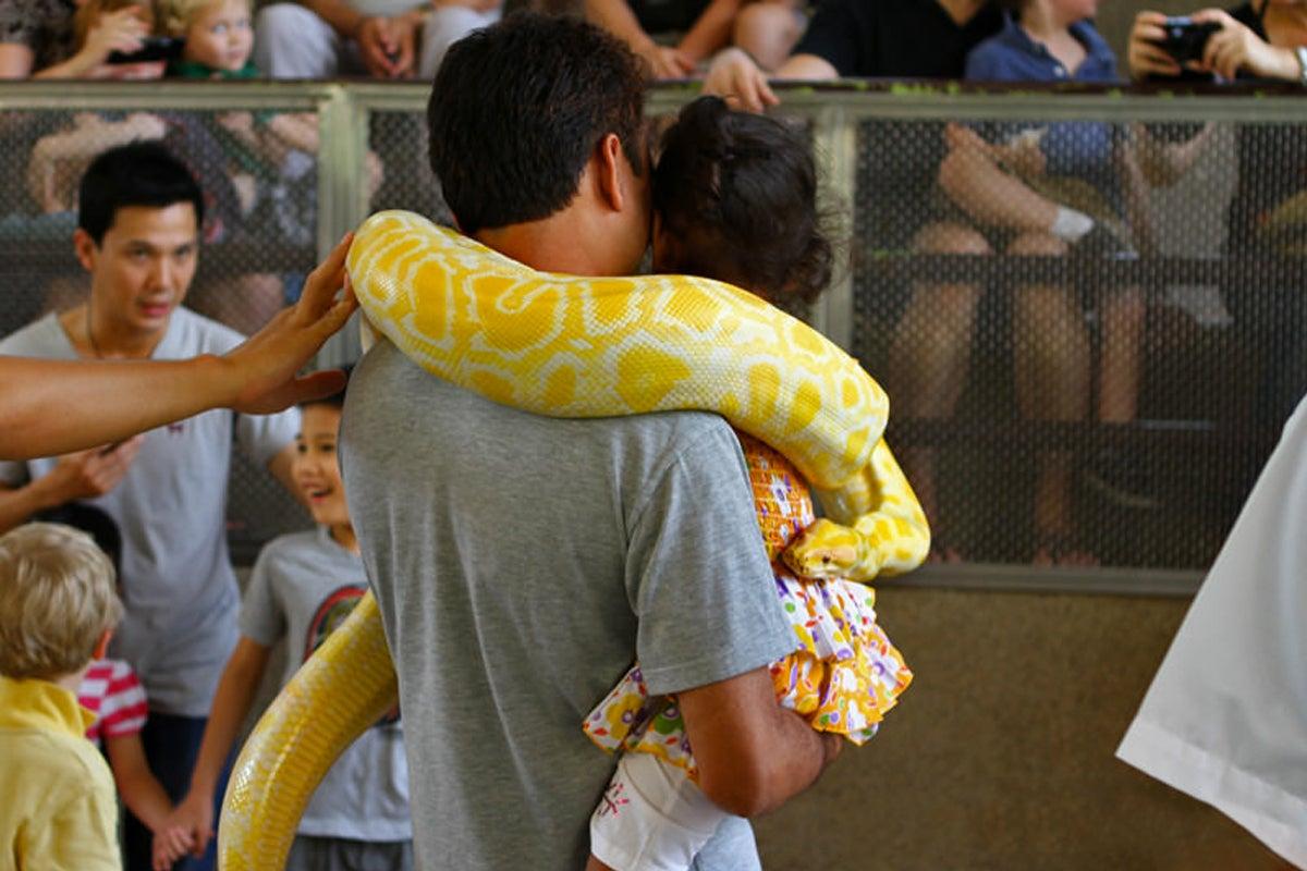 The Bangkok Snake Farm Queen Saovabha Memorial Institute In Silom Go Guides