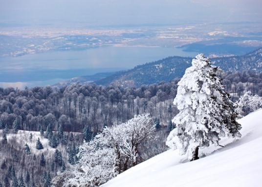 Kartepe, Turki