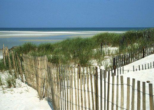 Orange Beach, Alabama, États-Unis d'Amérique