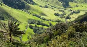 Національний парк кави