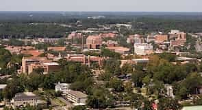 Universitas Negeri Florida