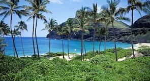 Wet'n'Wild 夏威夷主题水上乐园