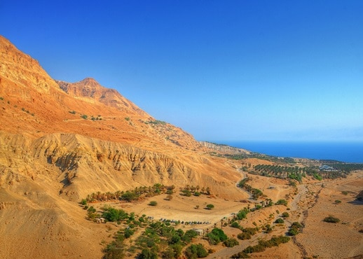 עין גדי, ישראל