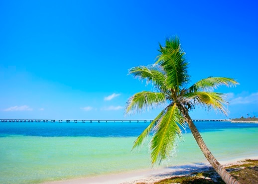 Summerland Key, Florida, United States of America