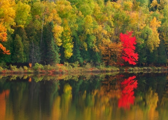 Tillsonburg, Ontario, Canadá