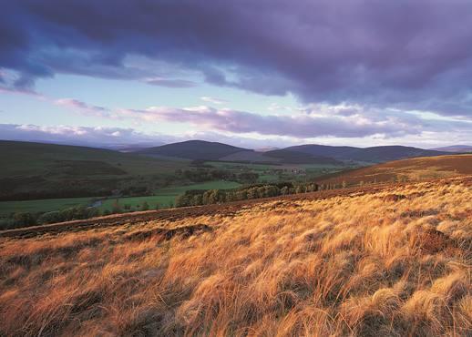 Schottland, Großbritannien