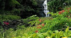 Opaekaa Falls utkikkspunkt