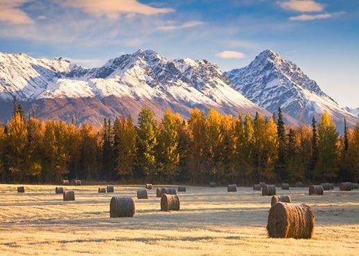 Palmer, Alaska, Amerika Serikat