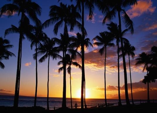 卡阿納帕利, 夏威夷, 美國