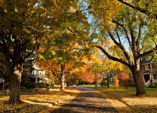 ニュートン, マサチューセッツ州, アメリカ