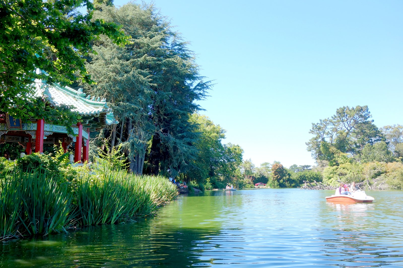 Go Pedal Boating At Stow Lake