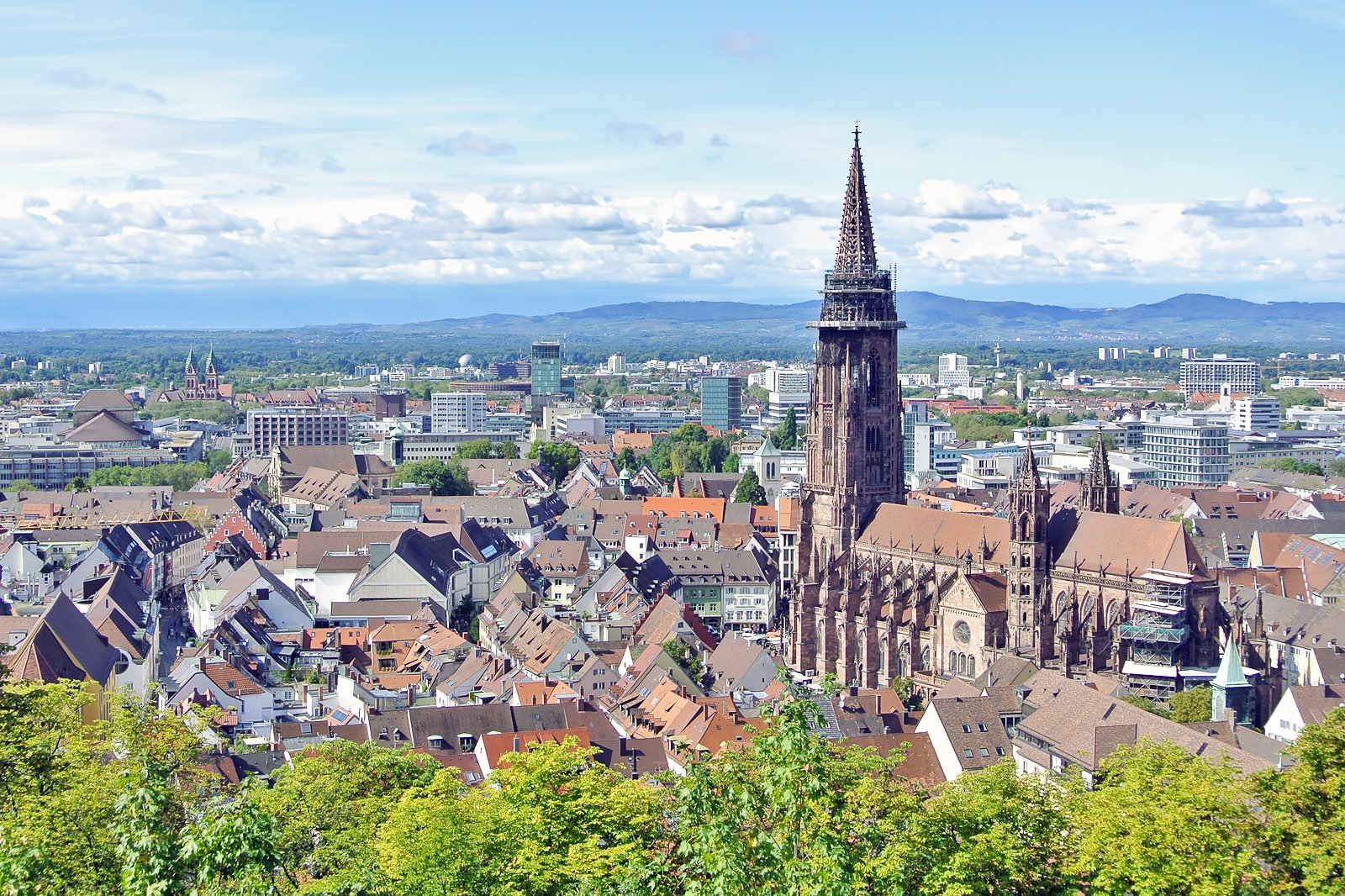 10 Best Things to Do in Freiburg - What is Freiburg Most ... Freiburg on black forest, zürich, lake constance,