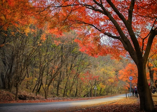 Hwagae, South Korea