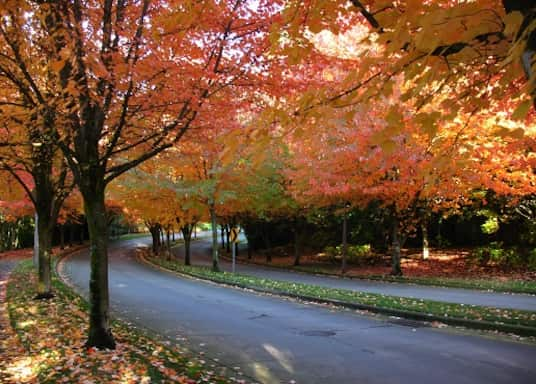 Milton-Freewater, Oregon, United States of America