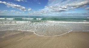 Kavouri tengerpart