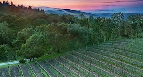 Winery 山