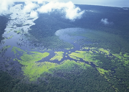 Manaus, Βραζιλία