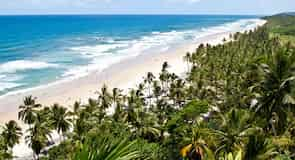 شاطئ كونشا