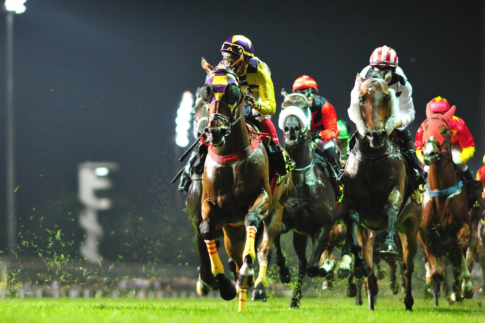 Coney island singapore horse betting bettingexpert tipovi