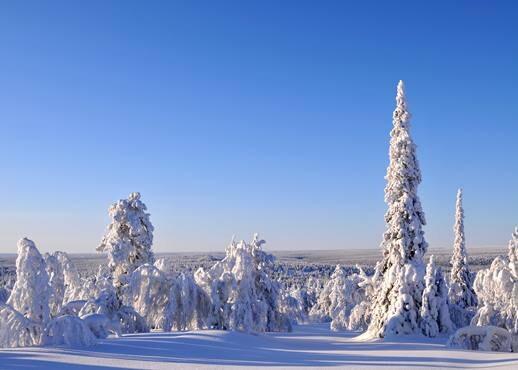 Saariselka, Finska