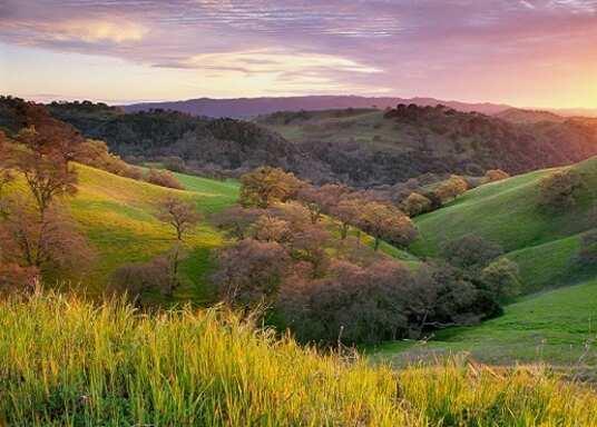 Orinda, California, United States of America