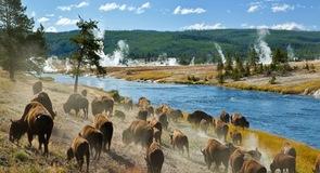 Gardiner-hegy, Yellowstone Nemzeti Park