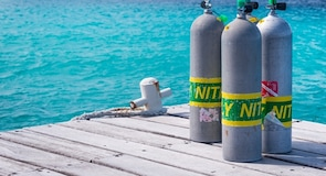 ศูนย์อนุรักษ์ลา Bonaire