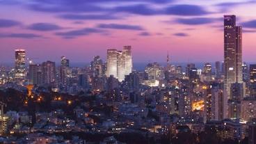 以色列貿易展覽及會議中心/