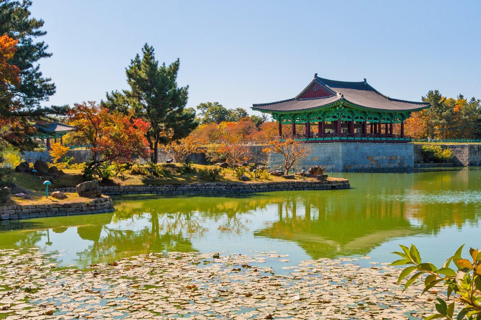 SEX AGENCY in Gyeongju