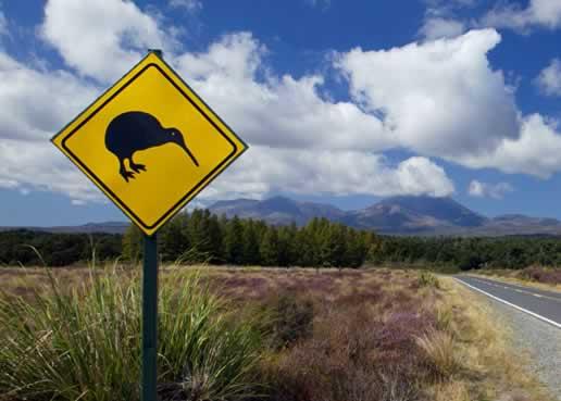 นิวซีแลนด์